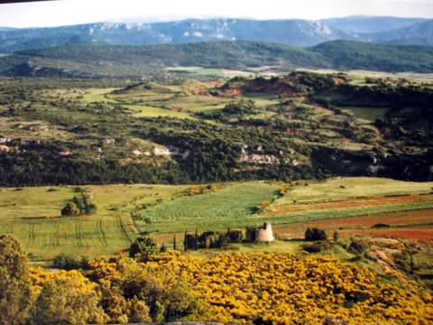The rolling hills of Languedoc Roussillon