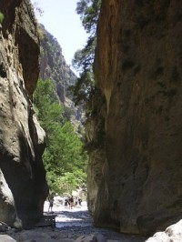 the-narrows-2
