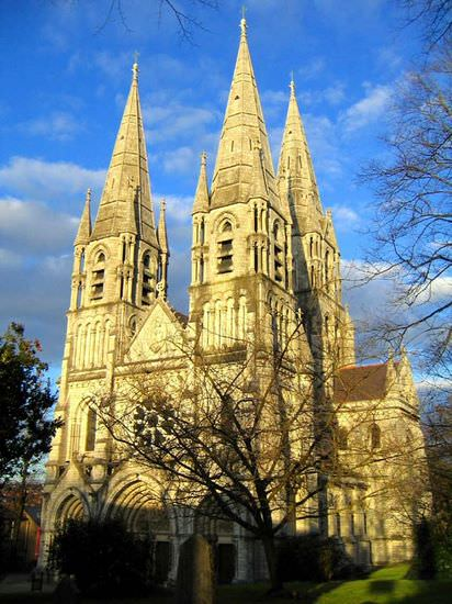 Cork_Cathedral_St_Fin_Barre's