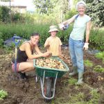 WWOOF Your Way Through Europe