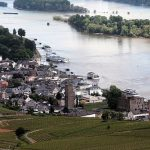 Romping Through Rudesheim am Rhein