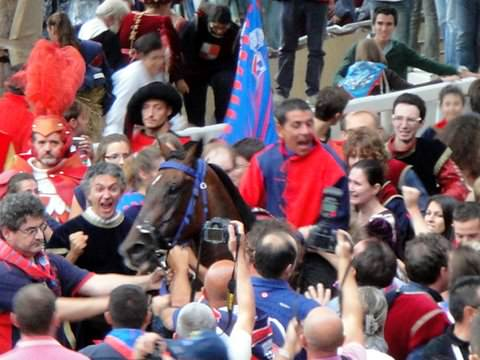 Jubilant winners surround their jockey and horse at the Asti Palio
