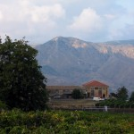 Guide to Wine Tasting on Mt. Etna in Sicily