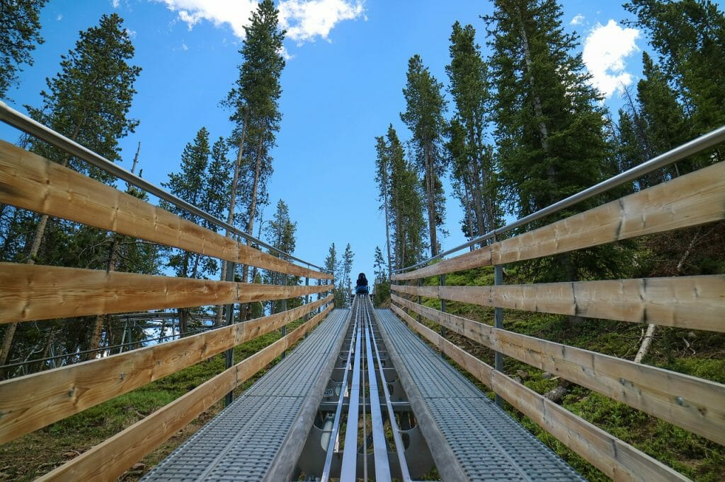 Alpine Coaster rails going through the woods