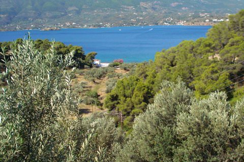 View from the Zoodochou Pigi Monastery garden in Poros