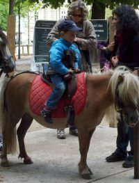 Jardin du Luxembourg Pony Rides