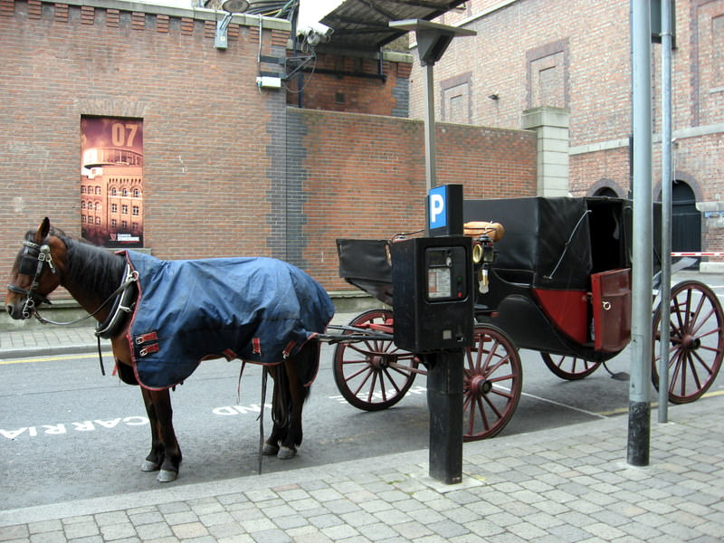 Traditional Guinness Delivery Method
