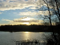 Along the Rhine River at Sunset