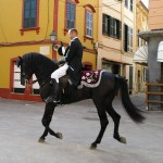 The Celebrated Menorcan Horse of Spain