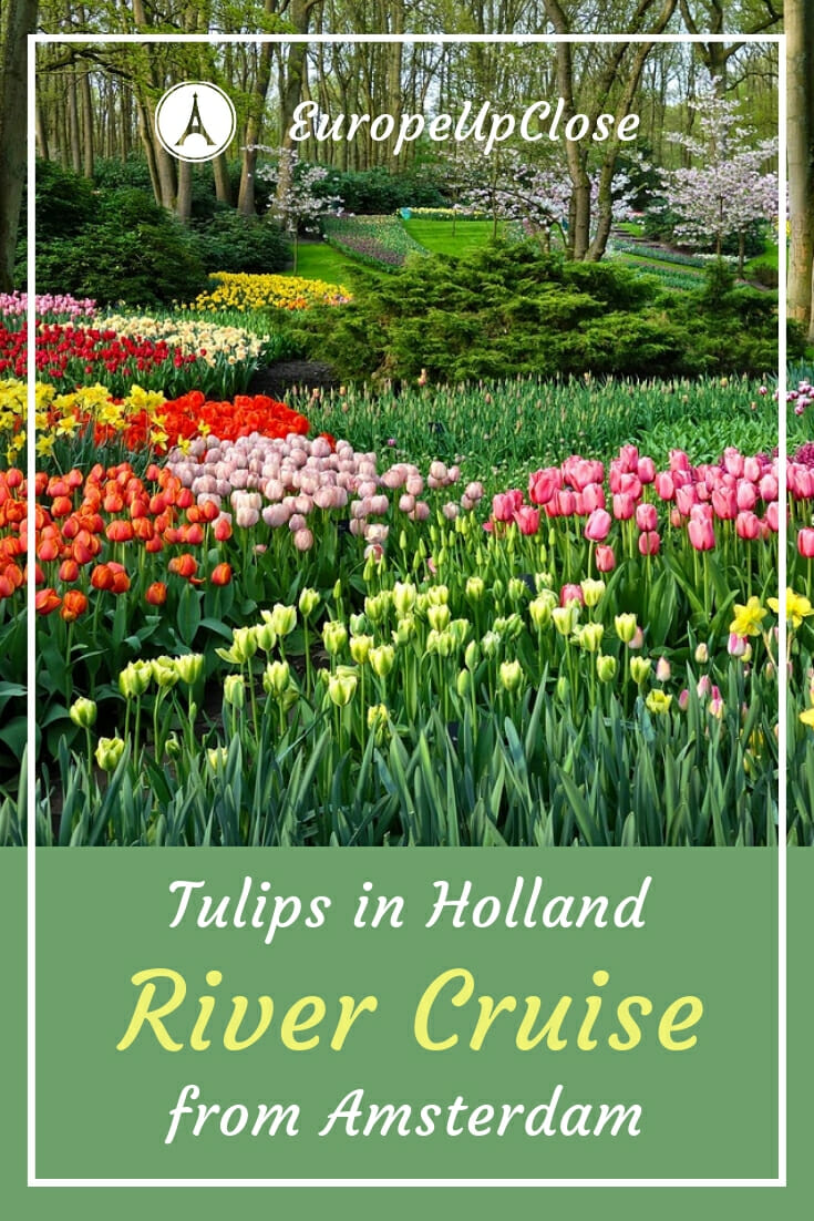 Tulips in Holland - Spring River Cruise from Amsterdam #Amsterdam #Holland #Netherlands #tulips #spring #rivercruise #Cruise #cruising #travel #traveling #Europe #europetravel #Europecruise #Cruising #traveling #traveler #keukenhof #tulipbloom #flowers #Tulip #tulips