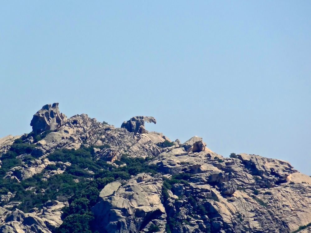 Cape Bear (Capo dell'Orso)