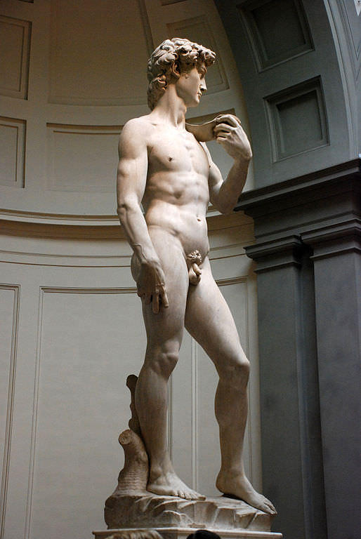Michelangelo's David at the Academia