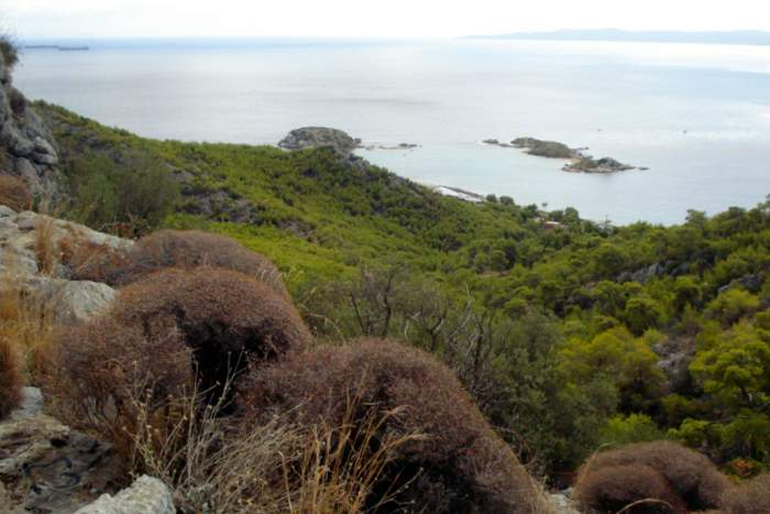 View from the Cave of Euripides on Salamania Island