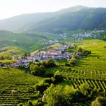 Sightseeing in the Veneto Along the Strada del Prosecco