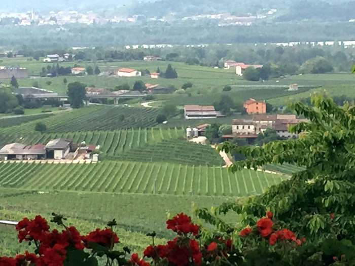 Stunning vista of paradise for a Prosecco lover along the strada del prosecco