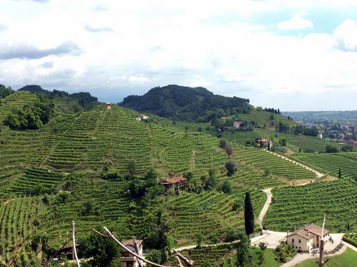 Hills and terraces near Soligo while sightseeing in the veneto