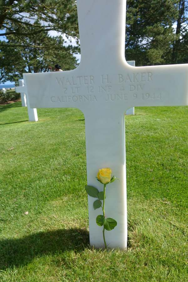 A Yellow rose for Walter Baker in Normandy's American Cemetery