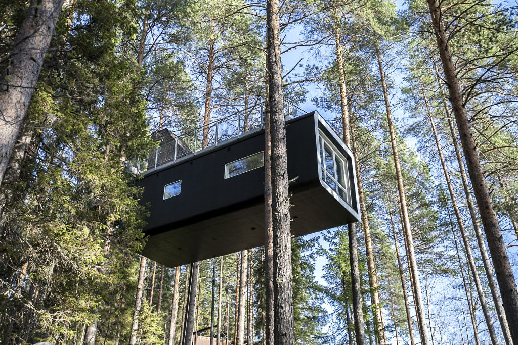 Tree House hotels around the world - Tree hotel in Sweden - Sleeping High up in the Tree Tops