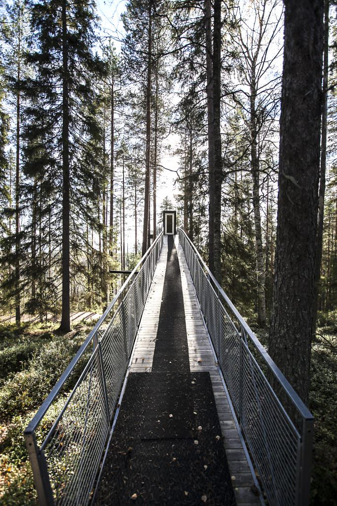 Childhood Dreams: Tree House hotels in Sweden and around the world - Tree hotel in Sweden