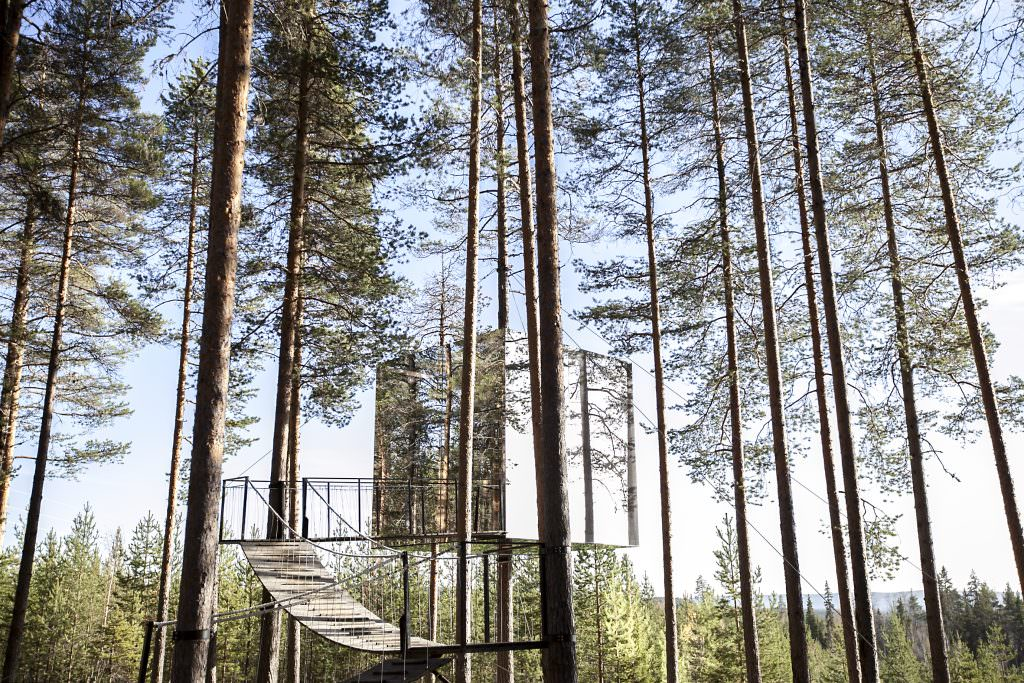 Tree Hotel in Sweden - Most Unique Hotels in the World