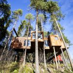 Unique Hotels: Swedish Tree Hotel