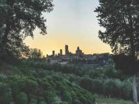 San Gimignano - Winery in Tuscany Italy