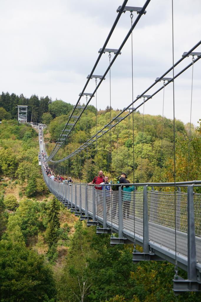 suspension bridge at Harzadrenalin Saxony-Anhalt - Harz Mountains