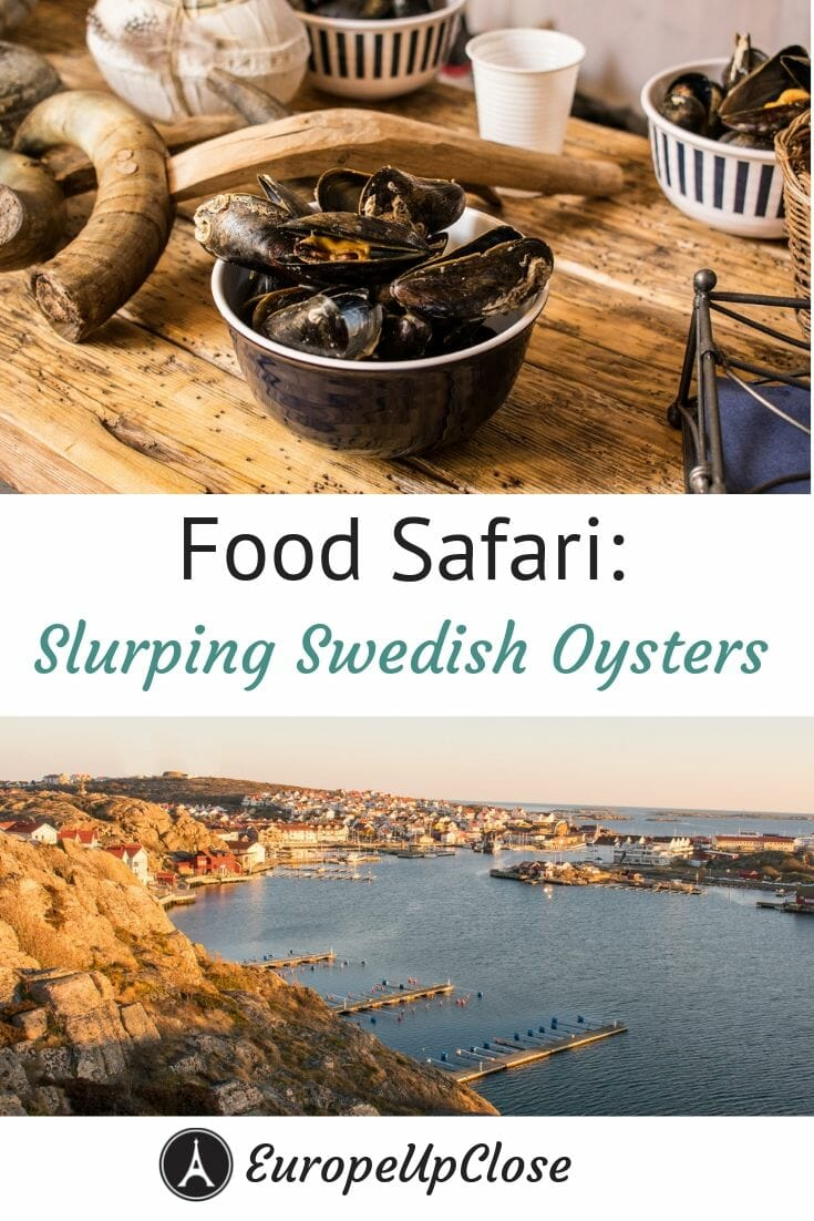Bowl of fresh mussels on top and Swedish coast on the bottom