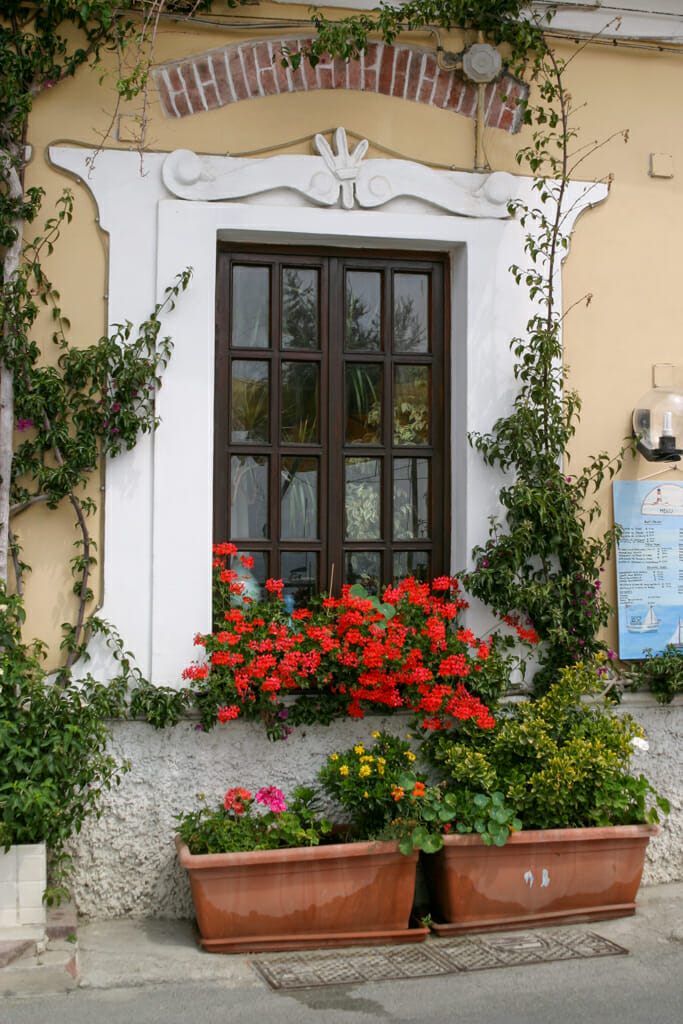 Vibrant red geraniums at a restaurant window greet visitors entering the village of Monterosso Al Mare.