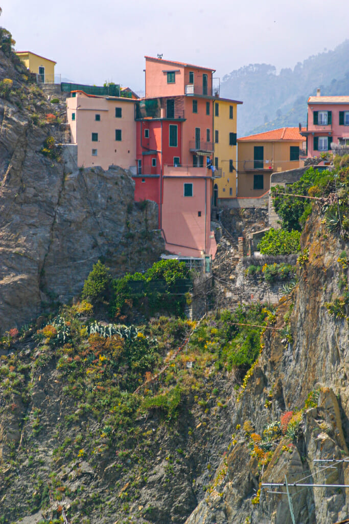 Colorful houses on the back side of the hills of Manarola