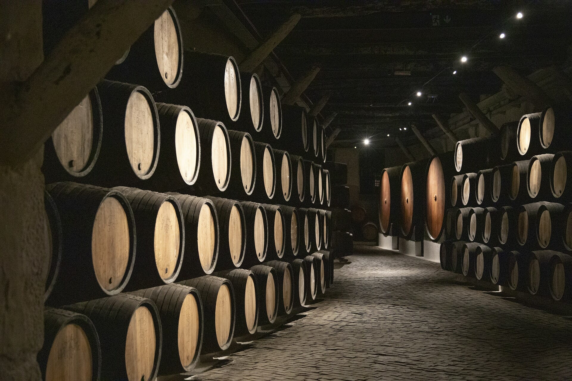 Wine barrels in and underground cellar, softly lit by the sparse lights overhead