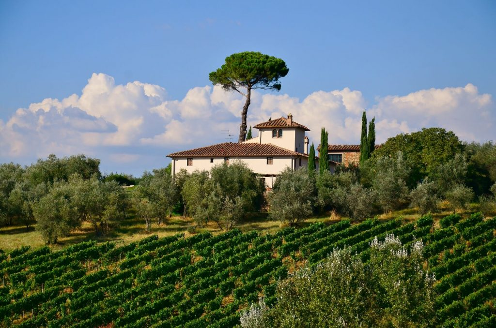 View of the back of a villa with a vineyard and clear skies over head