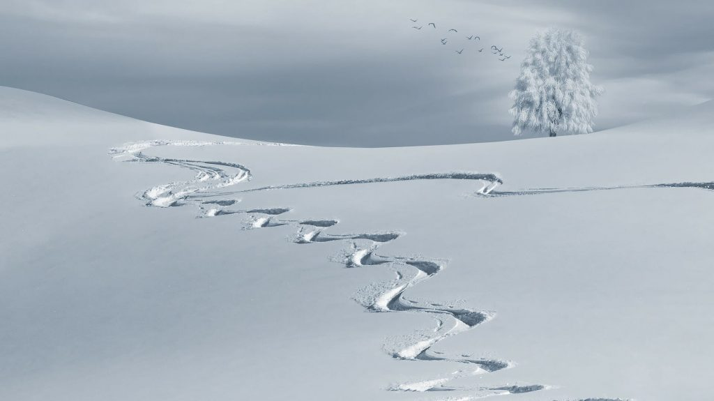 Deep ski tracks in the fresh snow