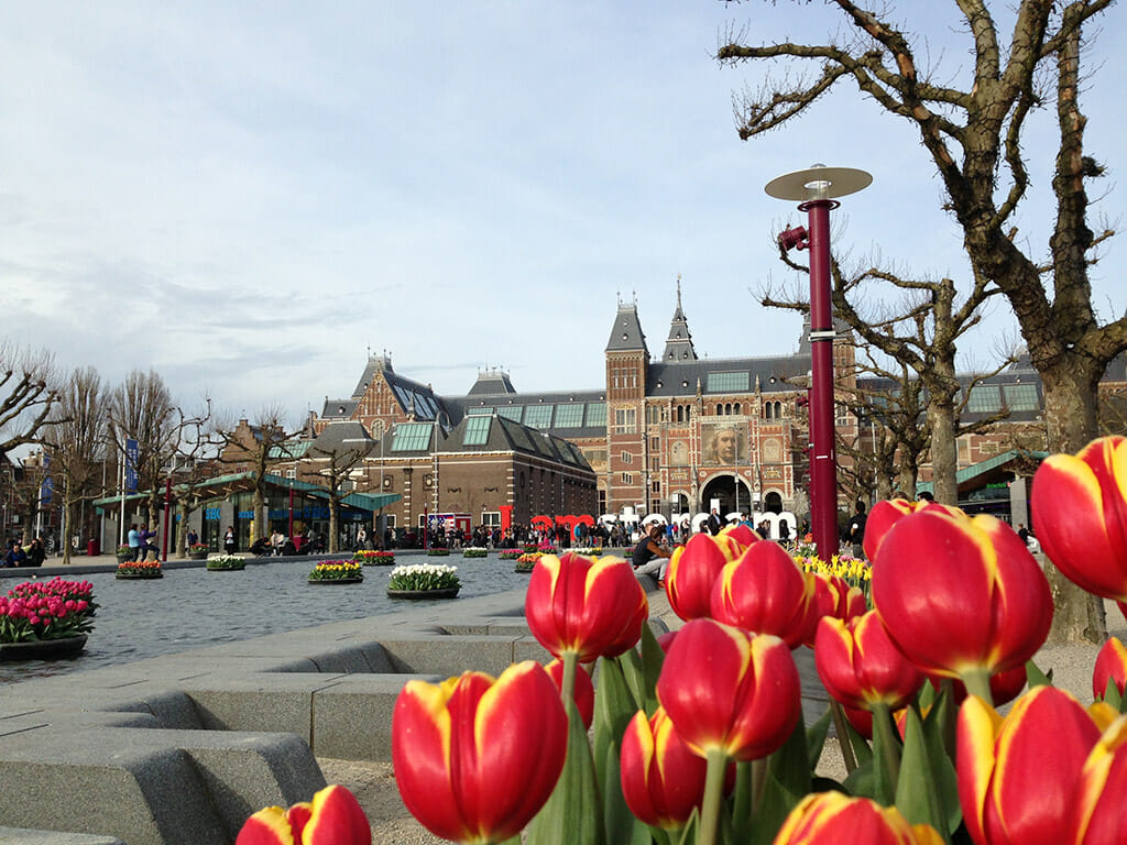 Red and yellow flowers peeking out over the view of the Van Gogh museum building