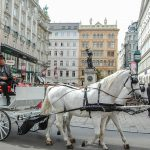 Vienna Sightseeing With the Vienna Pass – Does it Really Save Money?