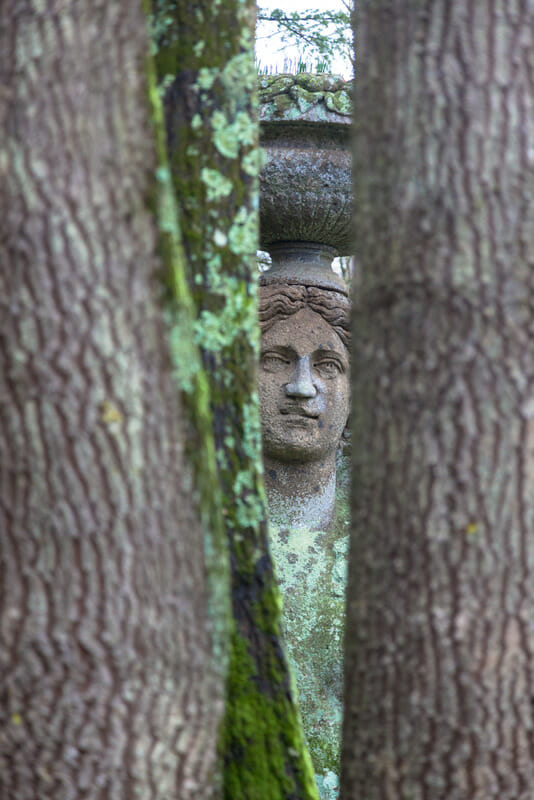 Stone sculpture Ceres with fruit basket on her head photographed between two tree trunks