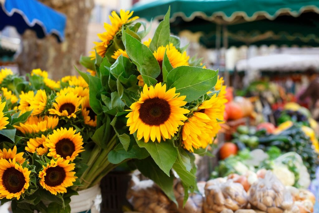 Farmers market in Seville Spain with vegetables and sunflowers.