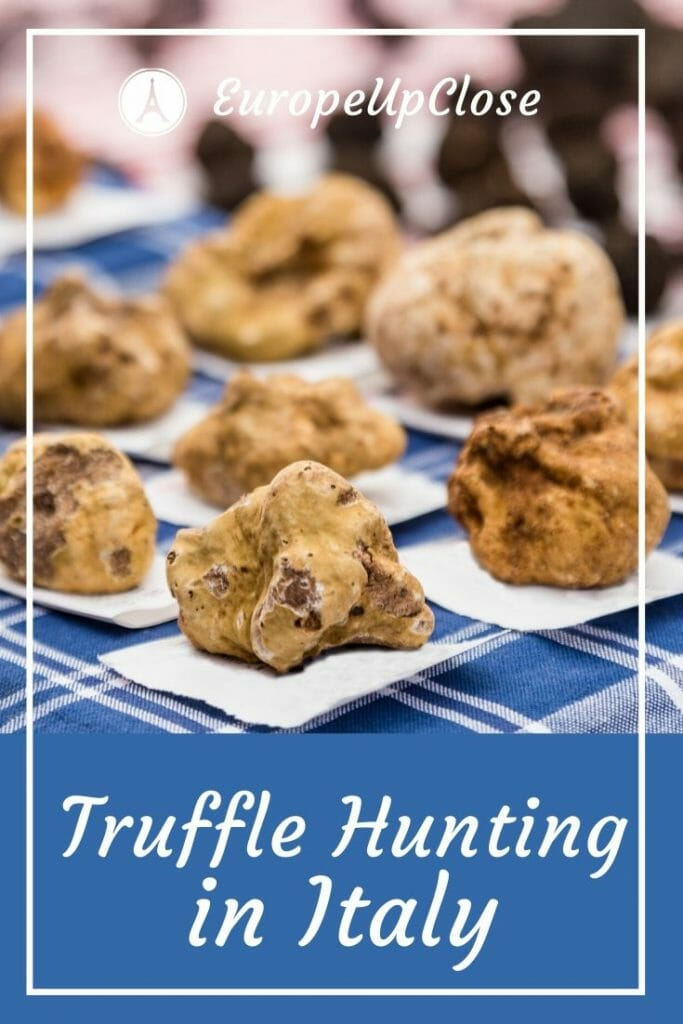 Let's Go Truffle Hunting in Italy - an incredibly tasty experience! #Foodie #Truffle #Italy #finedining #italian #piedmont #alba #puglia #italytrip #italytravel #italianfood #foodtravel #Italiandishes #truffles #whitetruffles #blacktruffles #luxurylifestyle #farmtotable #luxurytravel #europeupclose