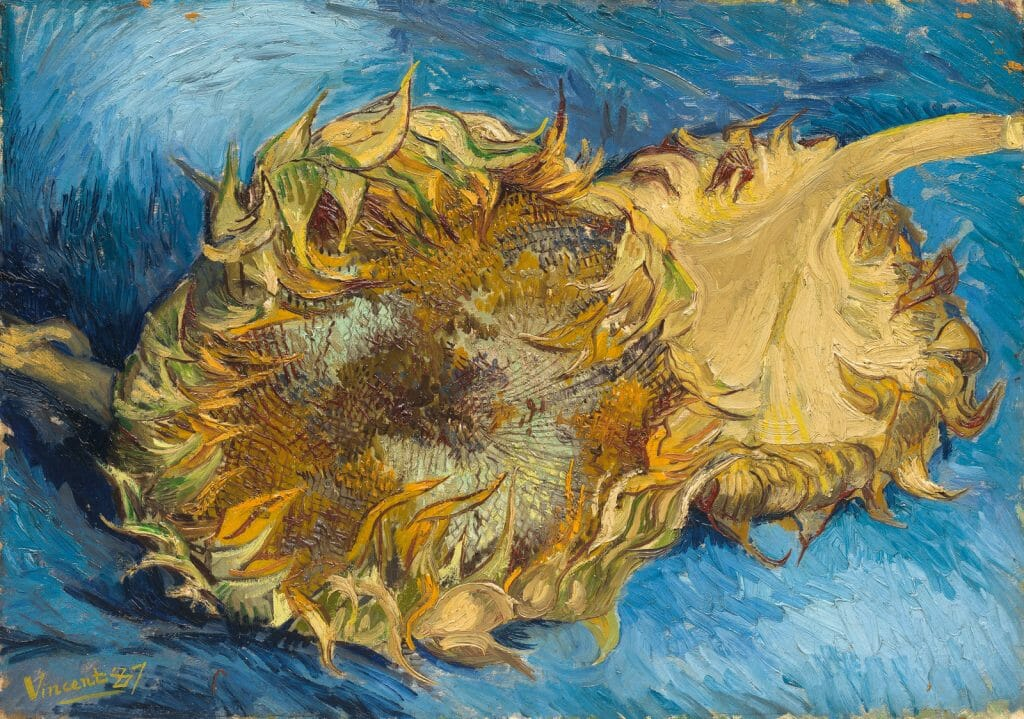 Sunflower painting by Van Gogh by the Met Museum https://www.metmuseum.org/art/collection/search/436524