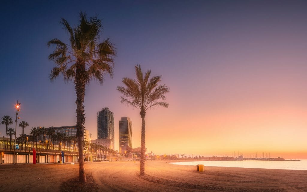 Dramatic sunset on Barceloneta beach of Barcelona with palm in the foreground, Spain