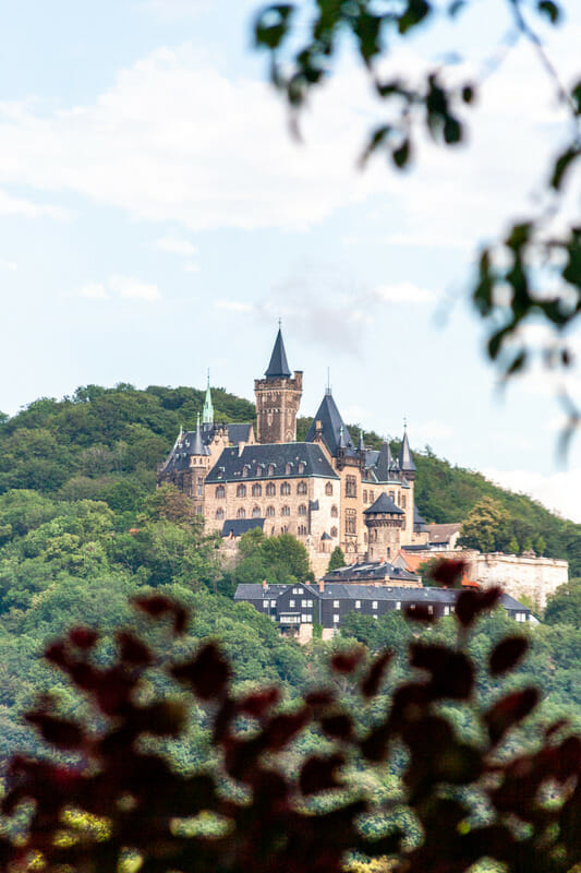 Wernigerode Castle sitting on a hill surrounded by forrest