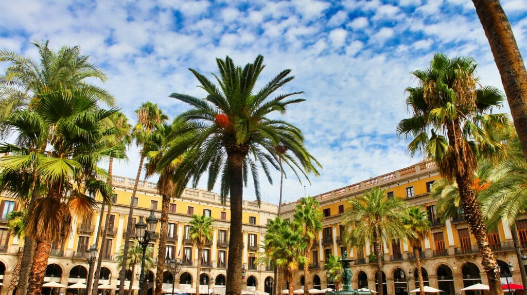 palm trees and yellow buildings around Plaça Reial square at the Gothic quarter of Barcelona in Spain. View of the old Plaça Reial town square or plaza showing the traditional architecture of the Spanish Barcelona